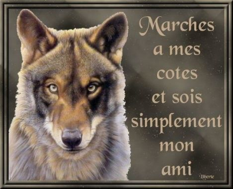 http://tite-louve-blanche25.t.i.pic.centerblog.net/a21b1b5f.jpg